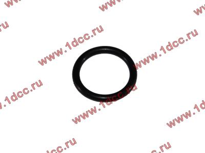 Кольцо уплотнительное форсунки резиновое H2/H3 HOWO (ХОВО) VG609070080 фото 1 Стерлитамак