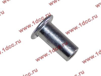 Заклепка алюминиевая 10х24 H2/H3 HOWO (ХОВО) 189000340068 AL фото 1 Стерлитамак