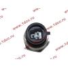Датчик давления масла H3 HOWO (ХОВО) VG1540090035/1 фото 2 Стерлитамак