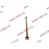 Болт центральный рессоры задней без бобышки H2/H3/SH HOWO (ХОВО) WG9638520018+013 фото 3 Стерлитамак