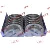 Вкладыши коренные ремонтные +0,25 (14шт) H2/H3 HOWO (ХОВО) VG1500010046 фото 3 Стерлитамак