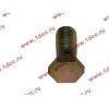 Болт пустотелый М12х1,25 (штуцер топливный) H HOWO (ХОВО) 90003962607 фото 3 Стерлитамак