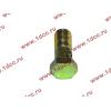 Болт пустотелый М10х1,0 (штуцер топливный) H HOWO (ХОВО) 81500070054 фото 3 Стерлитамак